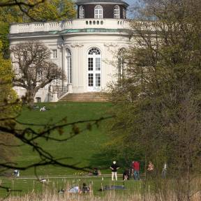 Dach-Schloss-Richmond.jpg_ALT
